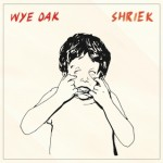 "Wye Oak, ""Shriek"" (2014) - Unlike many fans, I trusted Wye Oak in their turn from guitars to synths.  (Everybody, do what you got to do to keep it fresh!)  It took me a few listens, but with ""Glory"" as my gateway, ""Shriek"" has taken its rightful place in the Wye Oak pantheon next to ""Civilian."" -h"